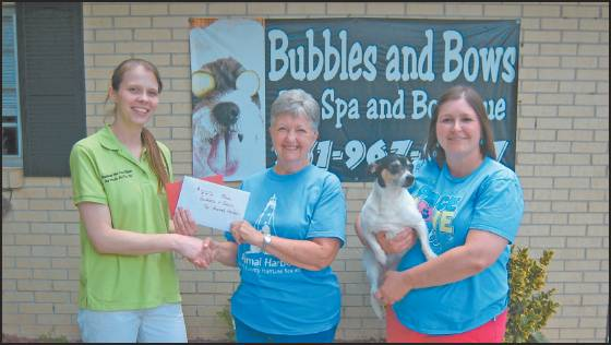 Bubbles and Bows Donated to Animal Harbor