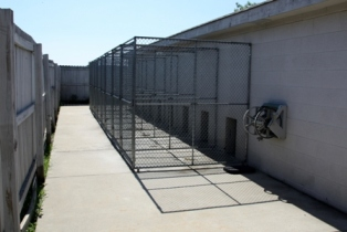 Pet boarding - Outside Run of th Dog Kennel